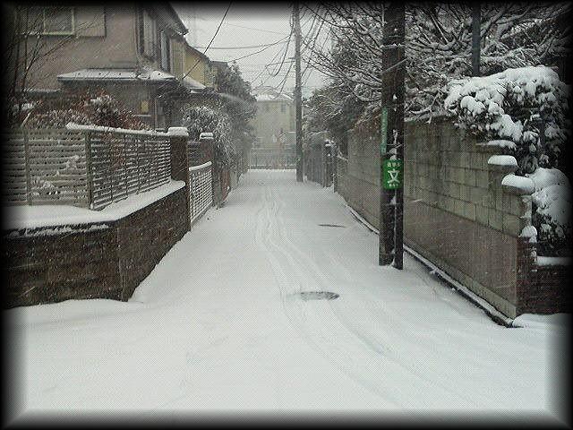 「 大雪・・・ 」_b0133126_12353579.jpg