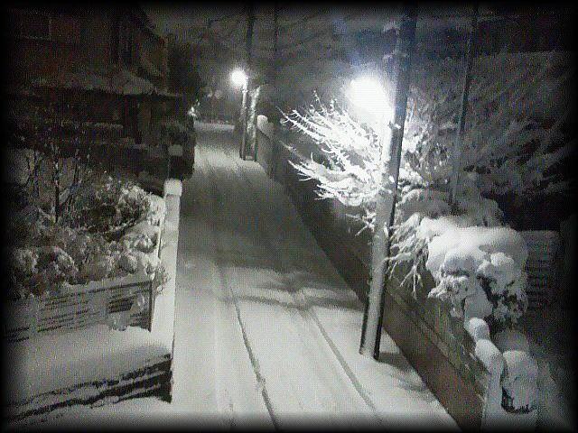 「 大雪・・・ 」_b0133126_12385285.jpg