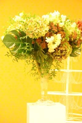 ブラフェと秘密の花園 _d0086634_180302.jpg