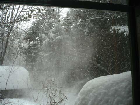 ♪雪が降る♪_d0127634_11155942.jpg
