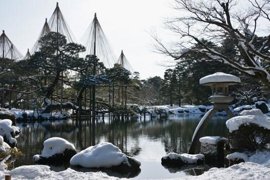 雪の兼六園(1)_c0093046_6582861.jpg