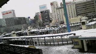 雪!雪!雪!_d0004447_1331186.jpg