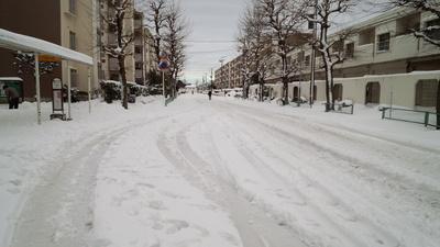 雪景色!_e0114857_1016139.jpg