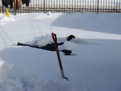 雪はつらいよ…_e0114857_11463159.jpg