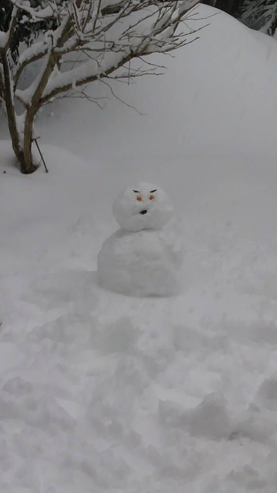 Winter Wonderland_e0116960_021725.jpg