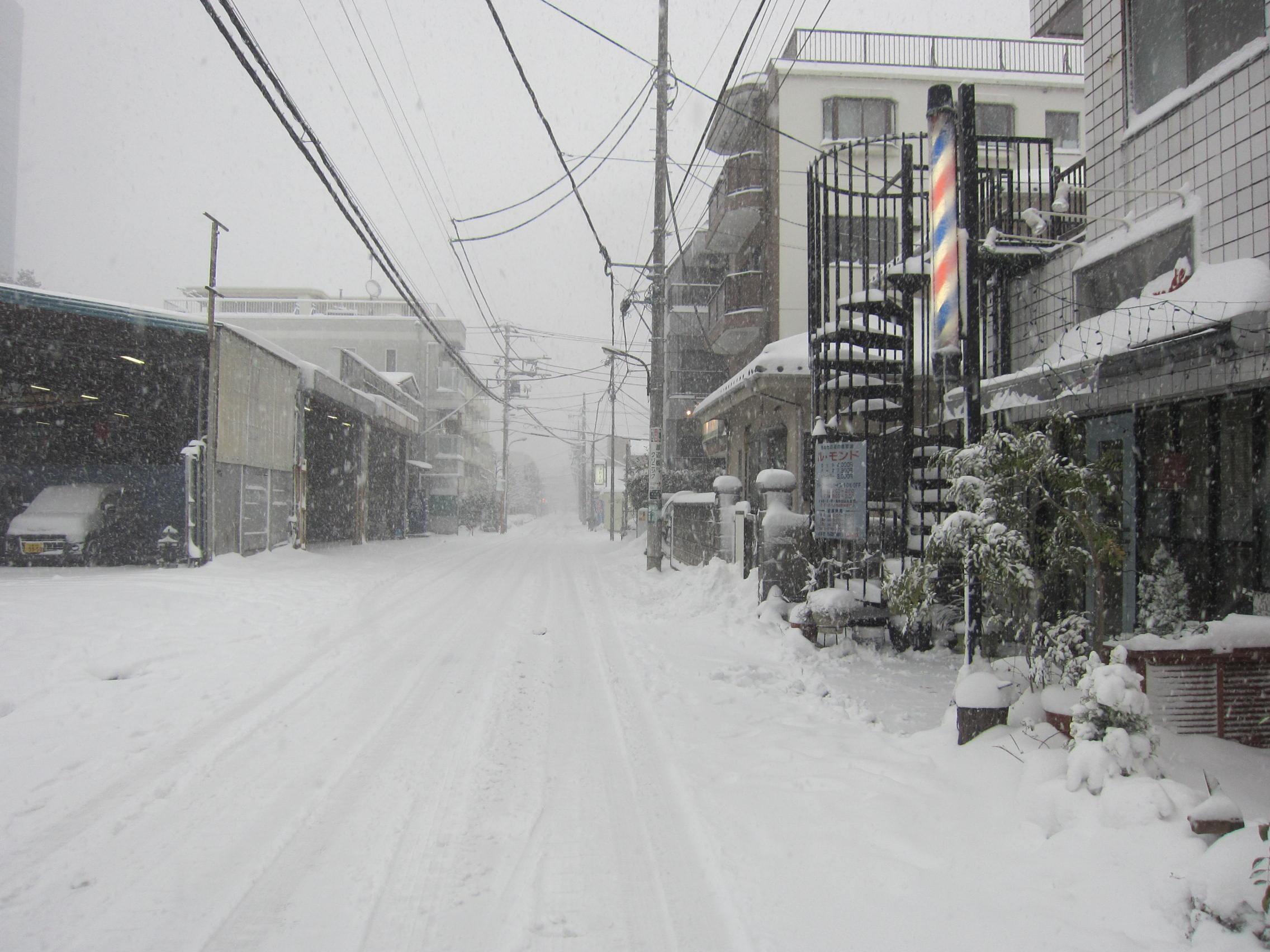 大雪_b0219170_14464470.jpg