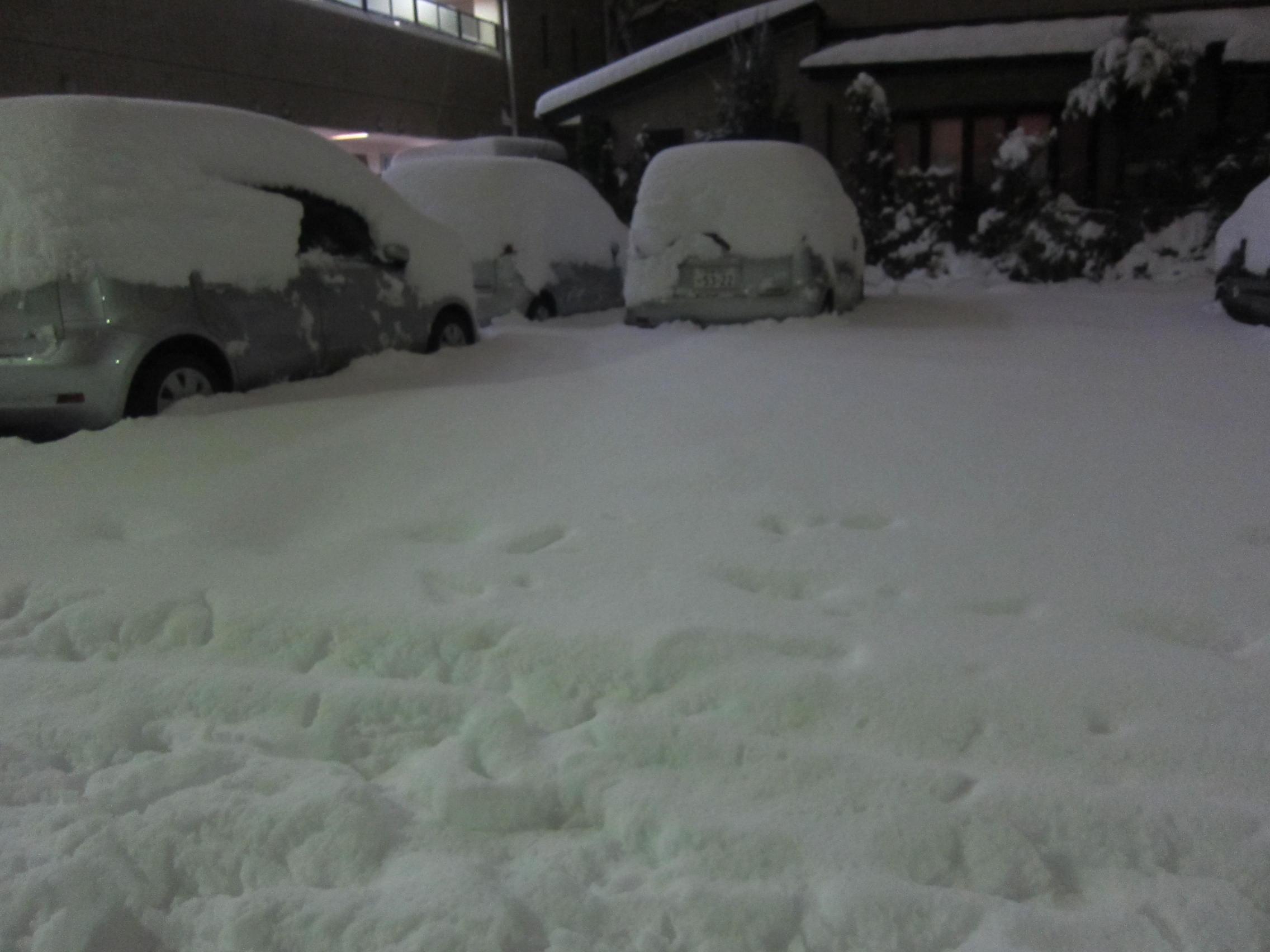 大雪_b0219170_14474017.jpg