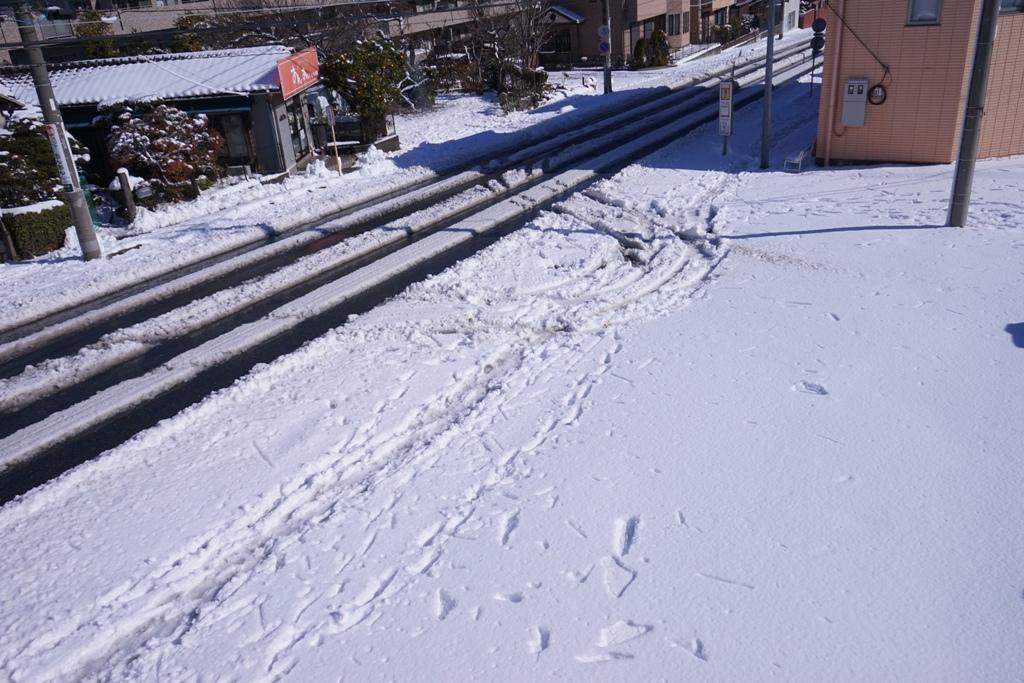 14年2月9日・大雪_c0129671_11265576.jpg