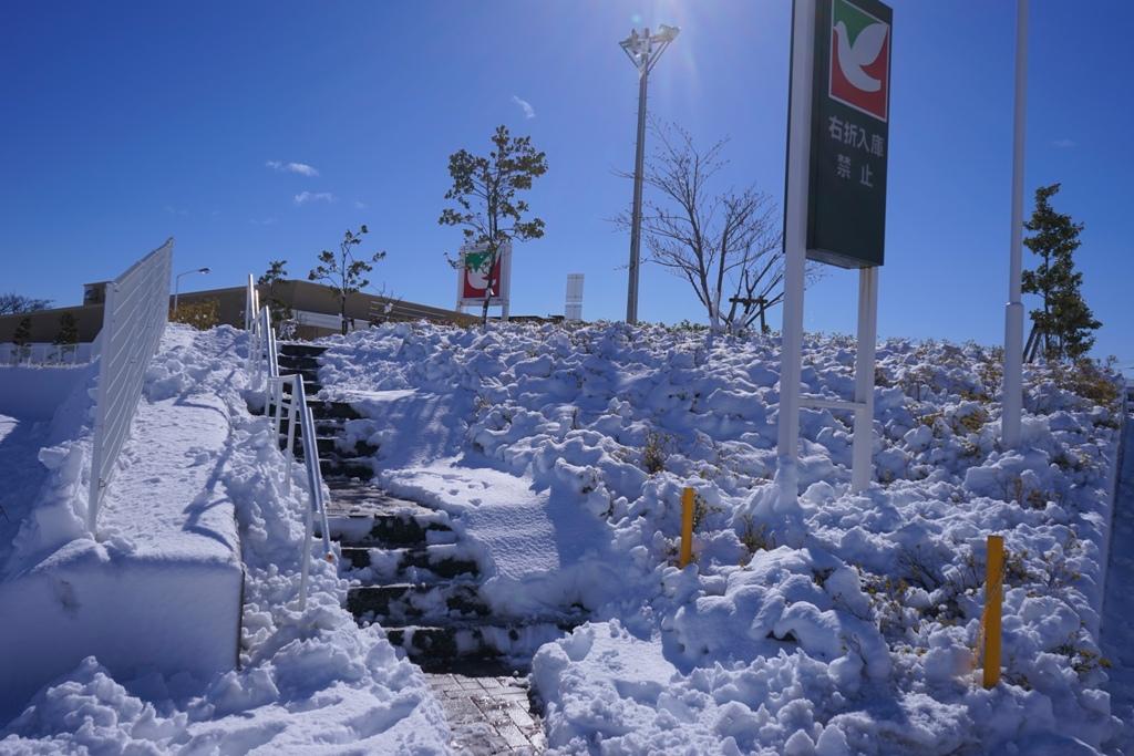 14年2月9日・大雪_c0129671_11272354.jpg