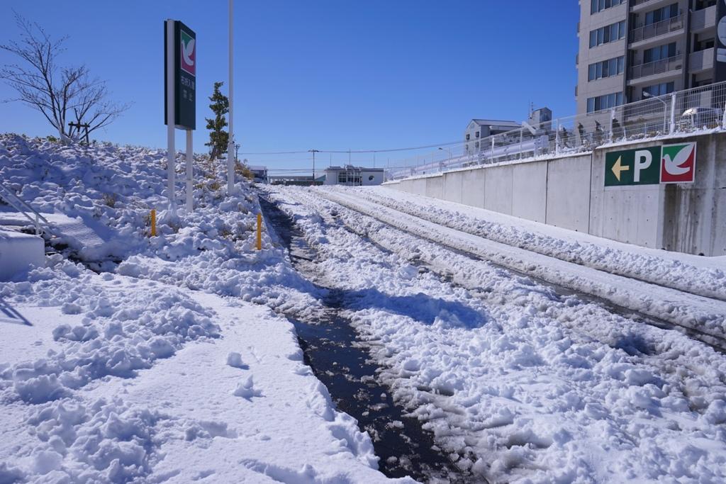 14年2月9日・大雪_c0129671_11275568.jpg