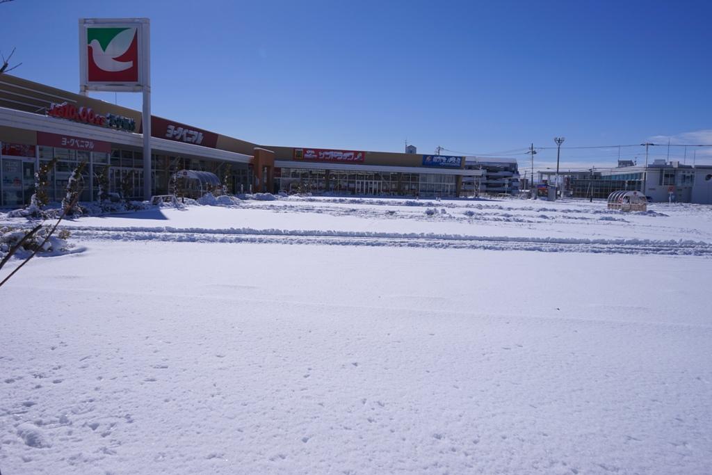 14年2月9日・大雪_c0129671_1128879.jpg