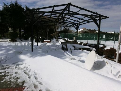2/9 雪がやみました。_a0300479_11111487.jpg