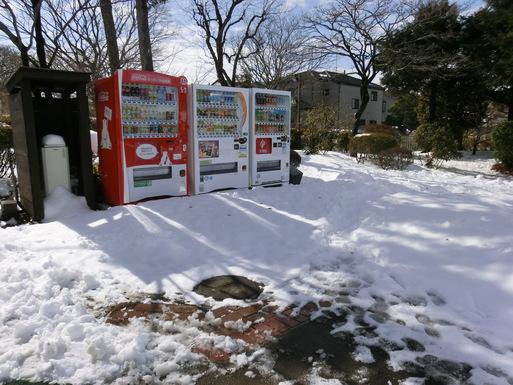 2/9 雪がやみました。_a0300479_11112779.jpg