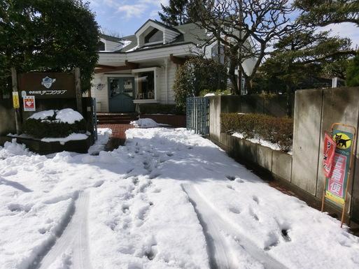 2/9 雪がやみました。_a0300479_11114071.jpg