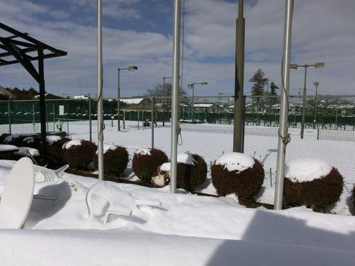 2/9 雪がやみました。_a0300479_11115263.jpg