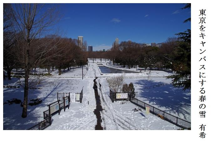 渋谷~代々木公園_a0248481_1711490.jpg