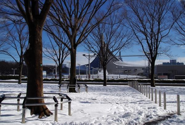 渋谷~代々木公園_a0248481_17125031.jpg