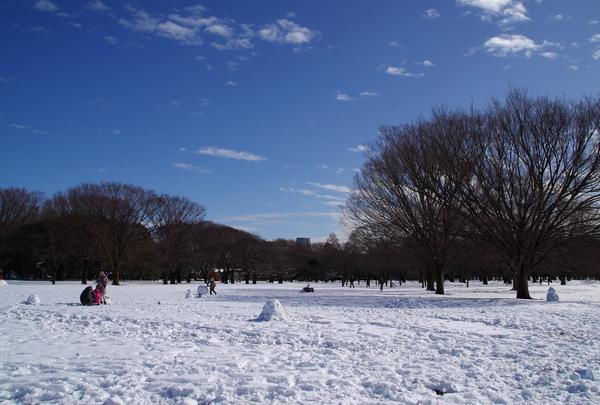 渋谷~代々木公園_a0248481_17132283.jpg