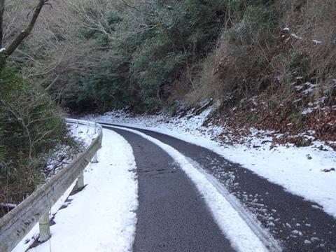 雪がやみ香川へ_e0201281_1955471.jpg