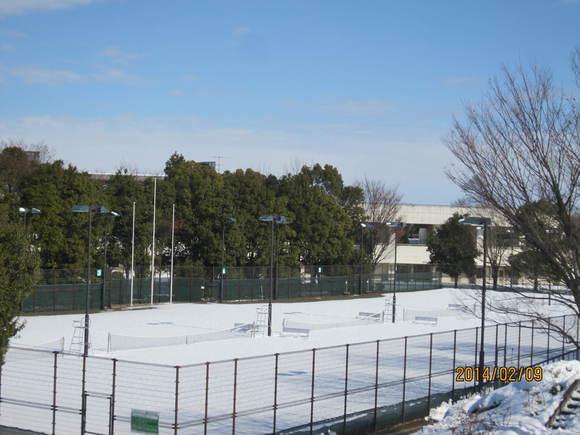 平成26年2月 テニスコートの積雪について_d0165682_1321830.jpg