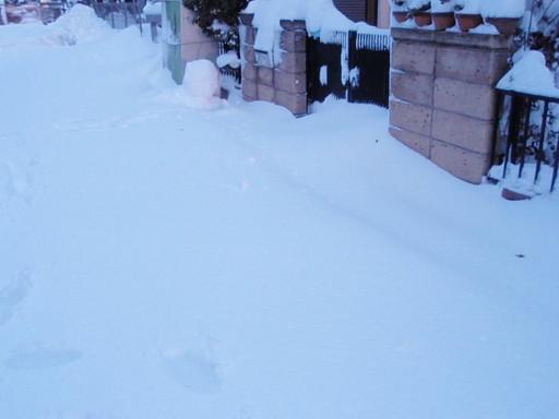 凄い積雪でした!_a0207196_13223923.jpg