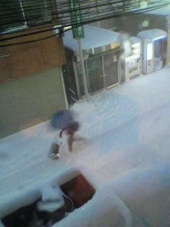 参ったね、雪。_d0096499_1054891.jpg