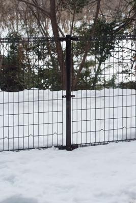 窓の外は未だ雪景色!_b0194208_2114342.jpg