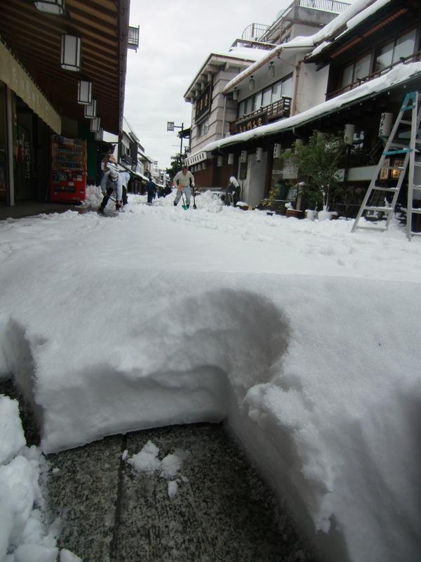 2月9日」雪の明日の都知事選_d0278912_033359.jpg