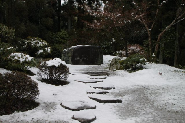 常徳寺 14雪けしき13_e0048413_20385558.jpg