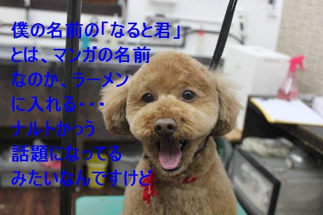 竹山画伯・・・!!!!!_b0130018_19432027.jpg