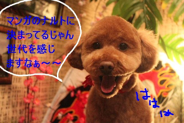 竹山画伯・・・!!!!!_b0130018_19432667.jpg