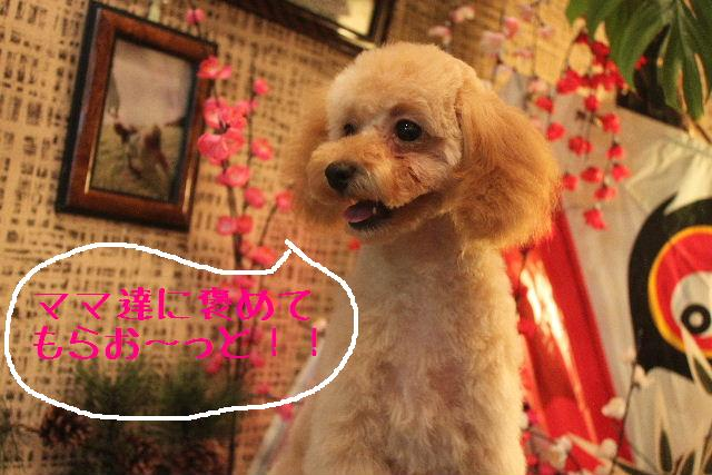 竹山画伯・・・!!!!!_b0130018_19451285.jpg