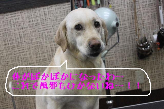 竹山画伯・・・!!!!!_b0130018_19463263.jpg