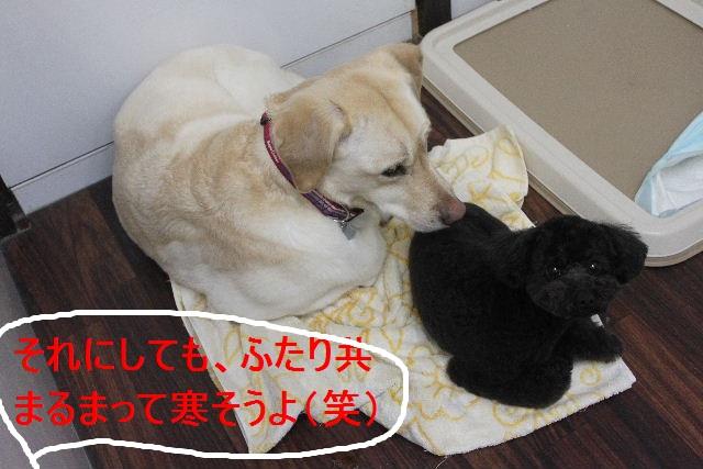 竹山画伯・・・!!!!!_b0130018_19471177.jpg