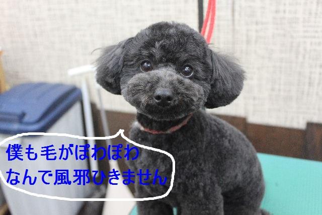 竹山画伯・・・!!!!!_b0130018_1947498.jpg