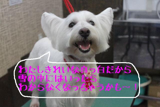 竹山画伯・・・!!!!!_b0130018_19494051.jpg