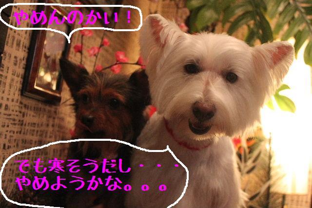 竹山画伯・・・!!!!!_b0130018_1950218.jpg