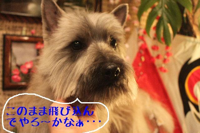 竹山画伯・・・!!!!!_b0130018_19524784.jpg