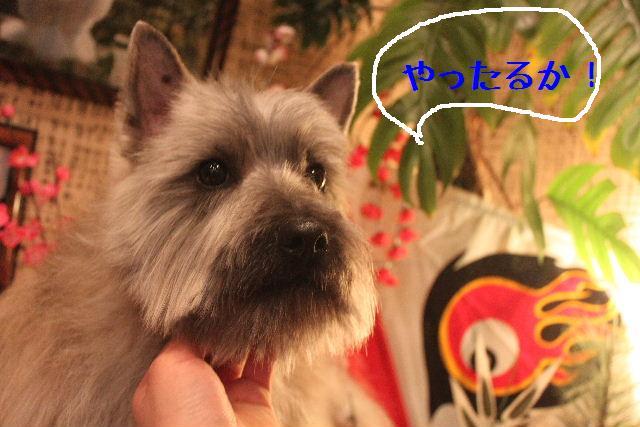 竹山画伯・・・!!!!!_b0130018_19525324.jpg