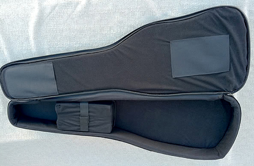 クロコダイル風な「Walker & Williams Guitar Case」。_e0053731_18462150.jpg