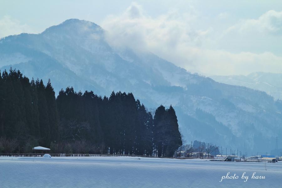 寒の滝_f0297537_16294645.jpg