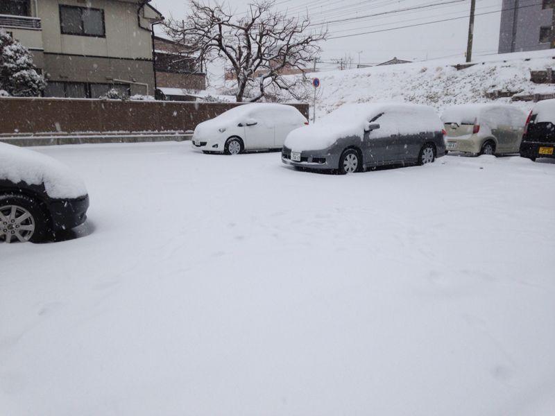 2月8日(土)大雪~ご来店♪_b0206845_1481416.jpg