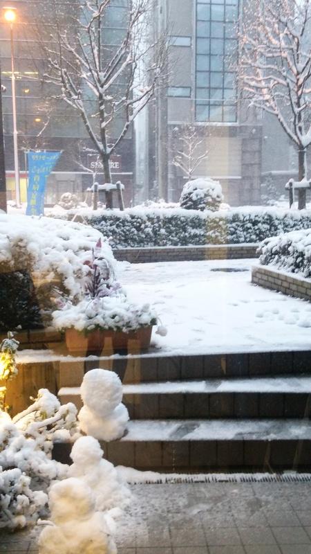 雪!!_e0309150_2051596.jpg