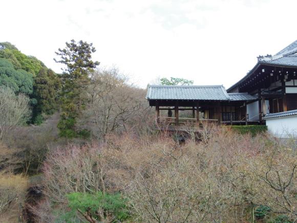 京都 5日目_f0158364_16210386.jpg