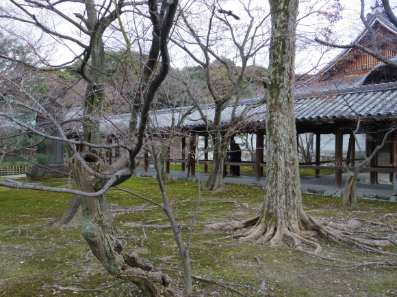 京都 5日目_f0158364_16224016.jpg