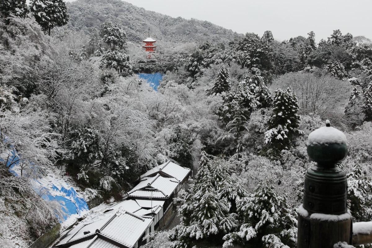 雪景色 2014 <清水寺>                        _f0021869_214823.jpg