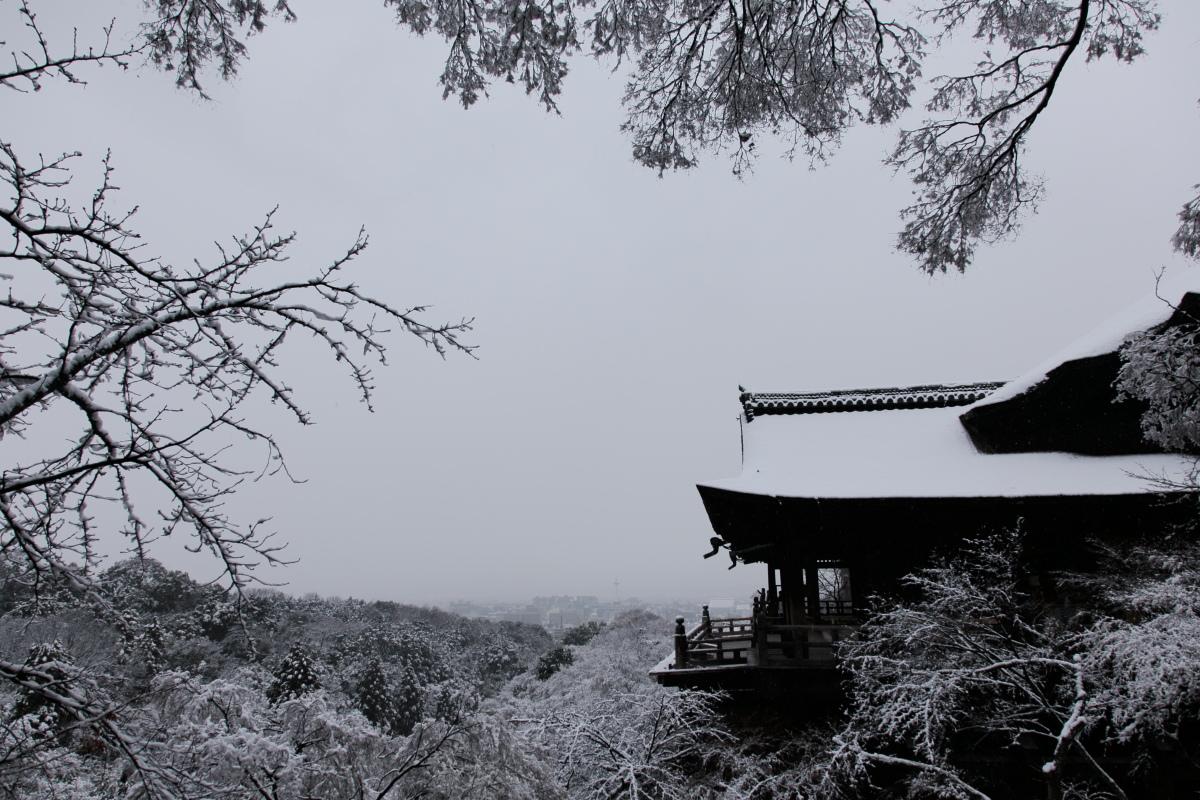 雪景色 2014 <清水寺>                        _f0021869_21484699.jpg