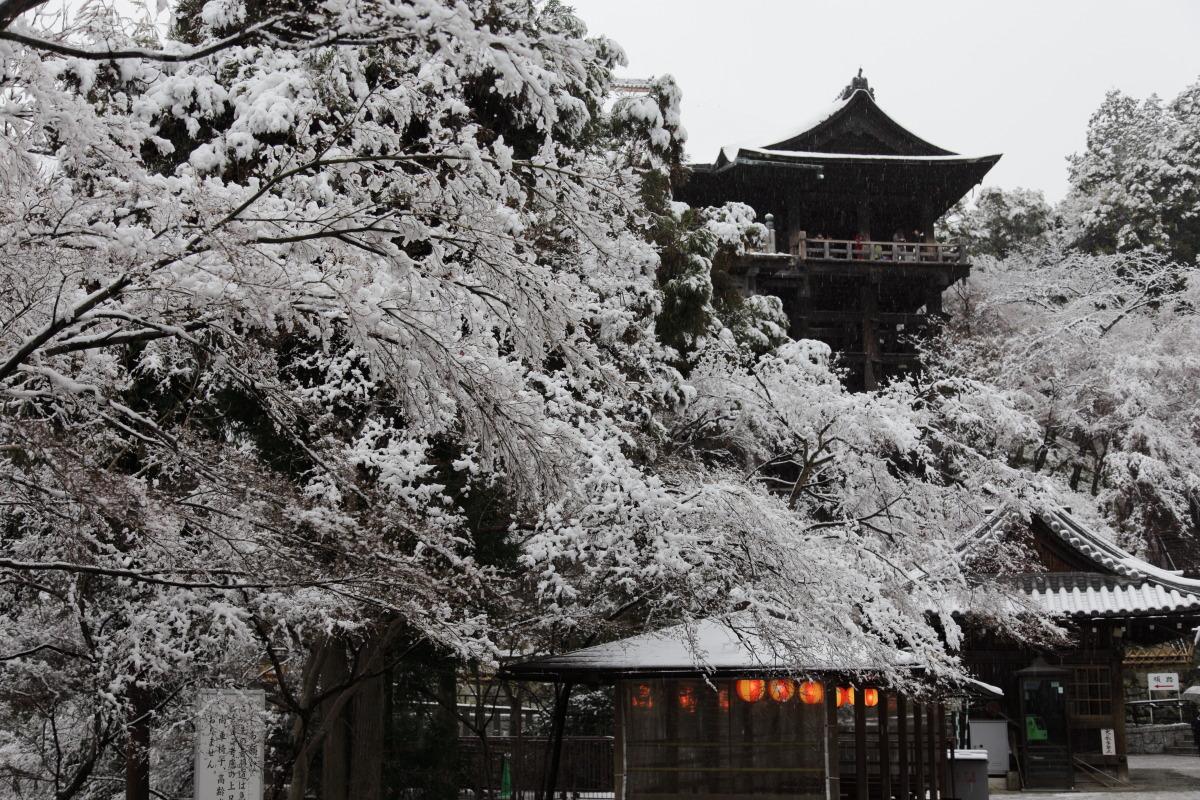 雪景色 2014 <清水寺>                        _f0021869_21494320.jpg