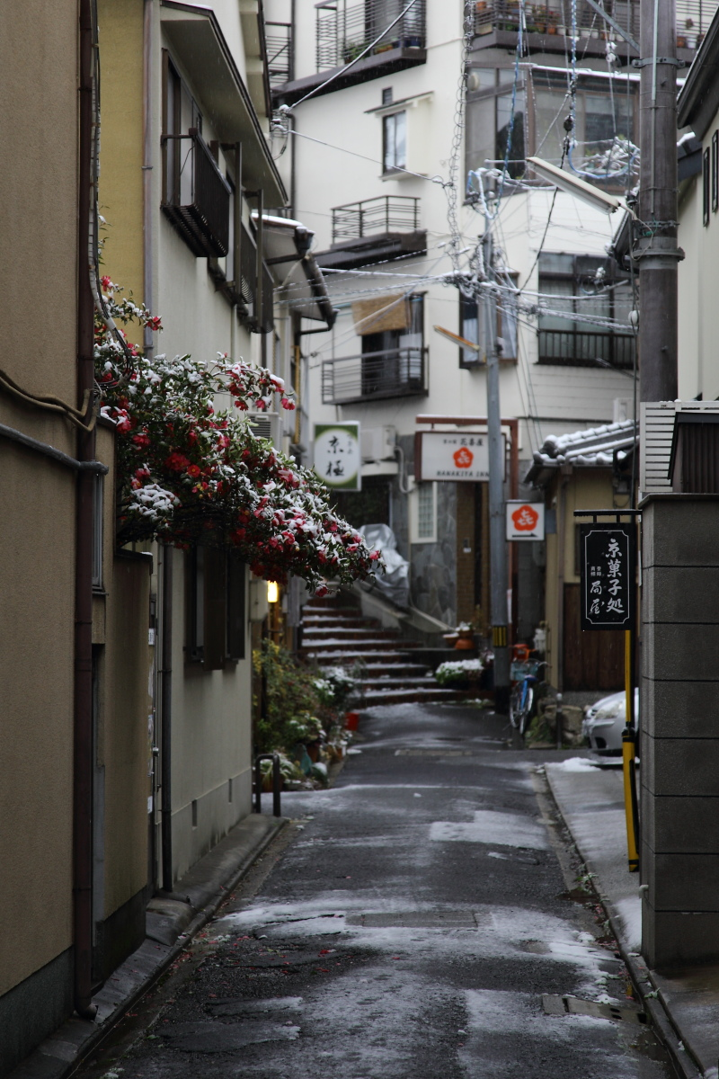 雪景色 2014 <清水寺>                        _f0021869_21503068.jpg