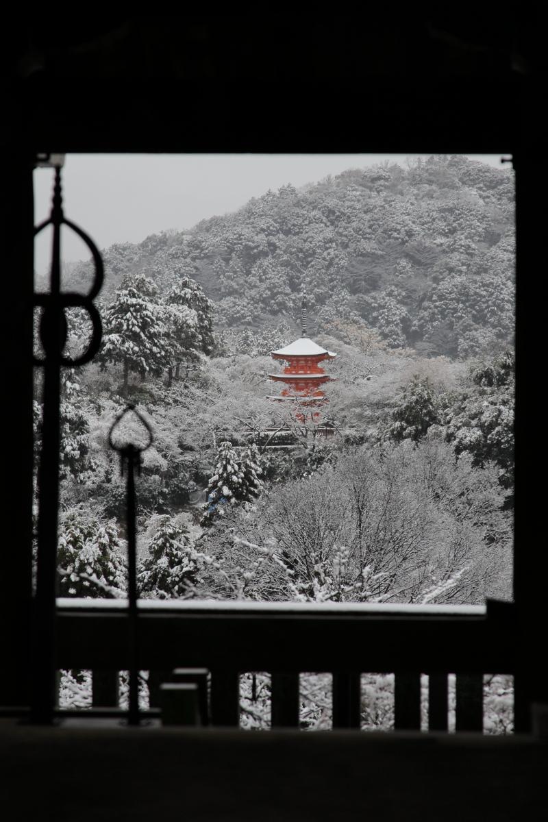 雪景色 2014 <清水寺>                        _f0021869_21504849.jpg